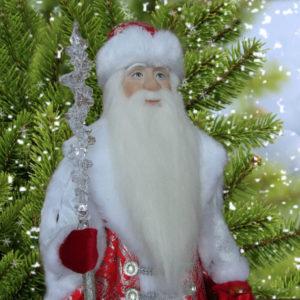 дед мороз в подарок
